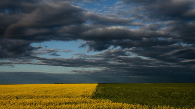 Saskatchewan prairie photo